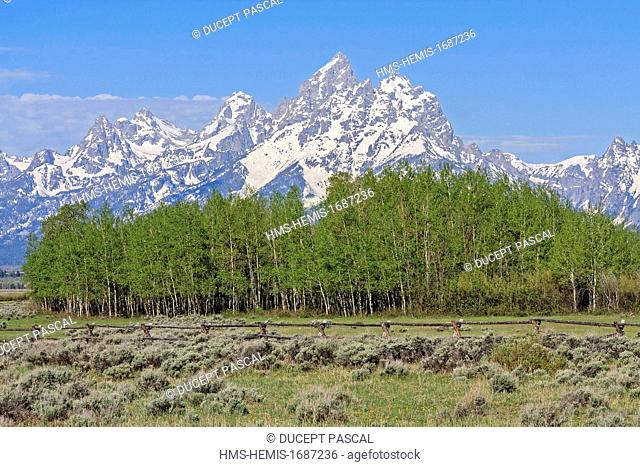 United States, Wyoming, Grand Teton National Park, Teton Range with Grand Teton (4,199 m/13,775 ft), highest point of the park