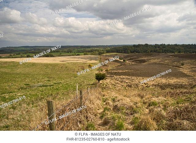 View of transition from farmland to heathland along barbed wire fence, Hyde Heath, Dorset, England, spring