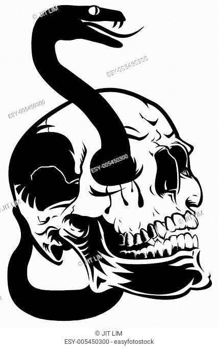 Skull with Snake Clip Art