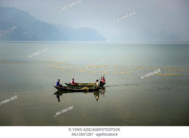 Nepal, Pokhara, local lake, boats with women
