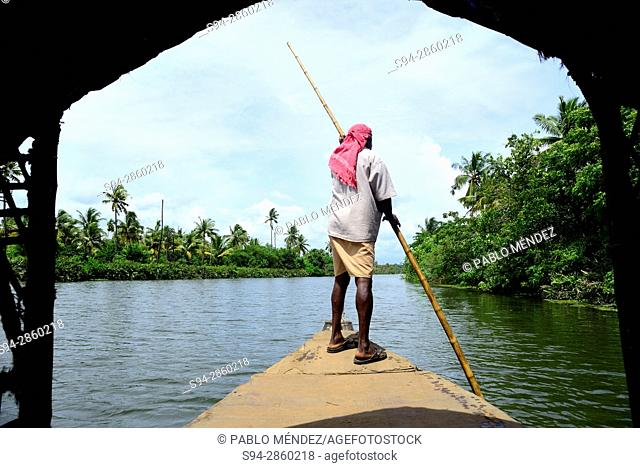 Rower in the Backwaters near Allepey, Kerala, India