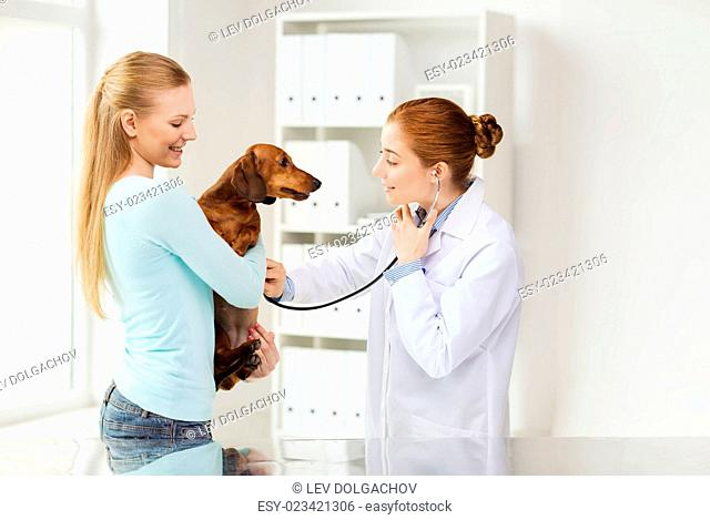 medicine, pet, animal, health care and people concept - happy woman holding dachshund and veterinarian doctor with stethoscope checking dog heartbeat at vet...