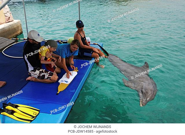 Netherlands Antilles, Curacao, dolphin therapy, Lucas Knecht, who is mentally and fysically disabled, is receiving treatment from therapist Marcus