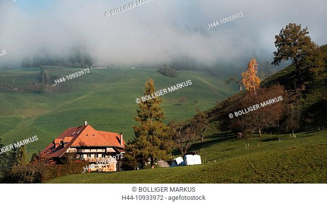 Farmhouse, farm, mountain court, Emmental, house, home, court, yard, hill scenery, canton Bern, Bern, scenery, agriculture, Switzerland, Europe, Wasen