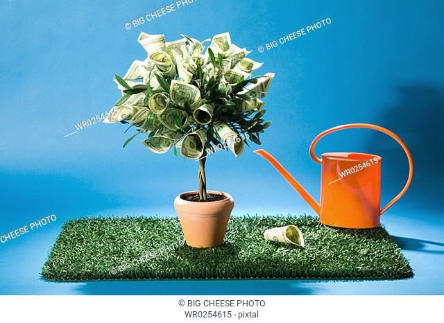 Money tree with watering can