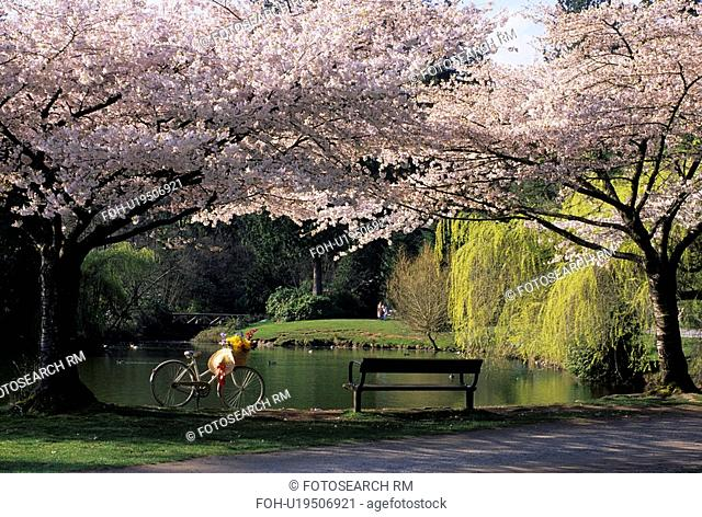 flowers spring rw 10213 central park picnicing