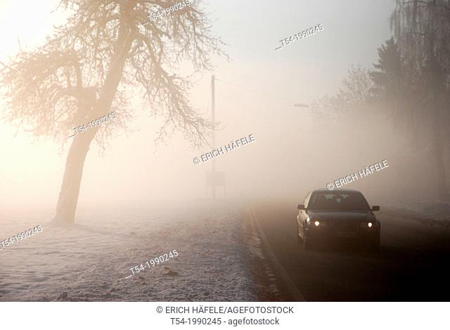 Cars in the winter fog