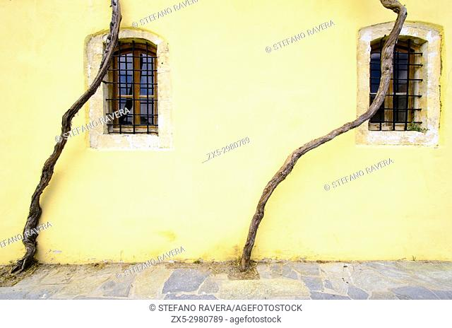 Trees and windows in Argyroupoli - Crete, Greece