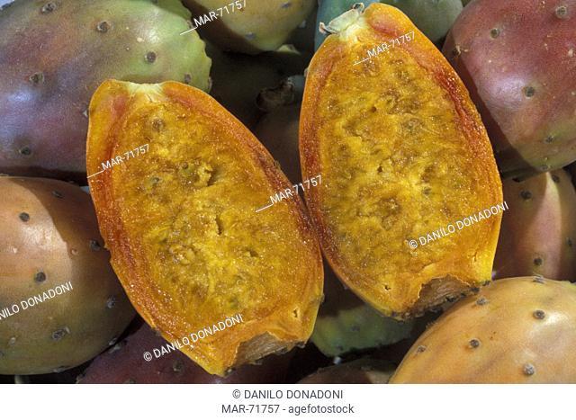 indian figs, studio, italy