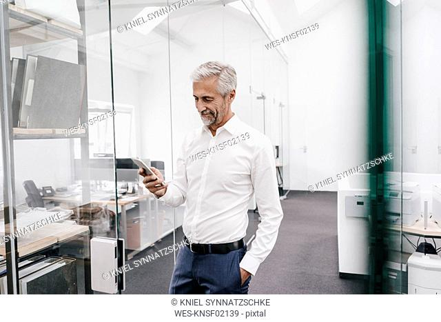 Mature businessman holding cell phone in office