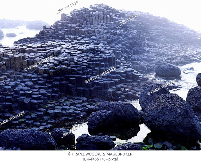 Giant's Causeway in the morning mist, Causeway Coast, Northern Ireland, Ireland