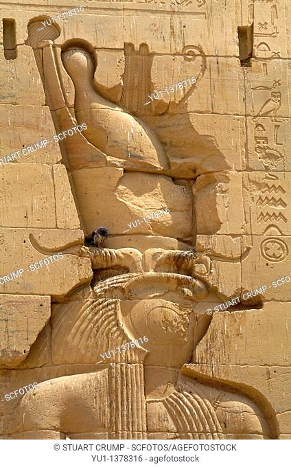 Falcon-headed sun god Horus shown in relief carvings at Philae Temple, Aswan, Egypt, North Africa