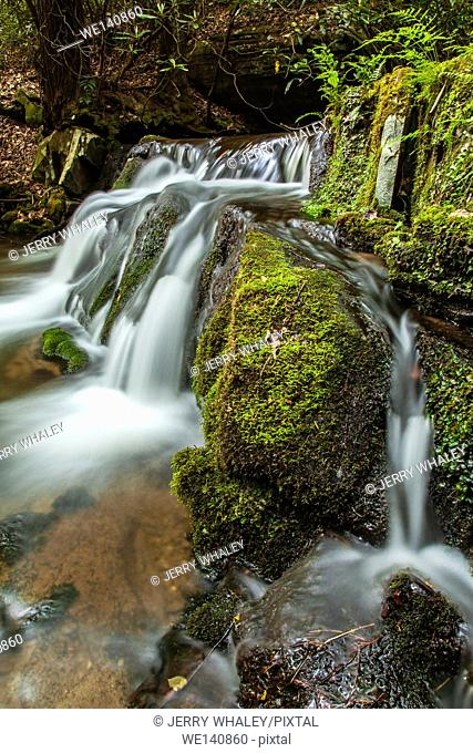 Waterfalls, Rhododendron Creek, Greenbrier, Great Smoky Mountains NP ,TN
