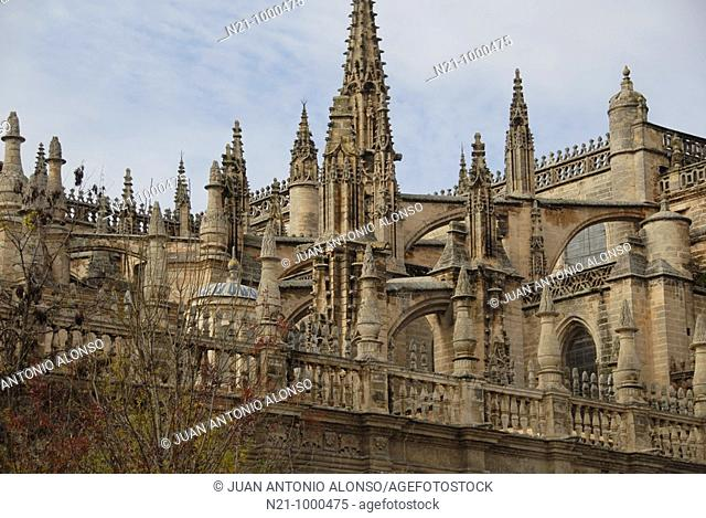 Cathedral. Detail of the top. Santa Cruz Quarter, Seville, Andalucia, Spain