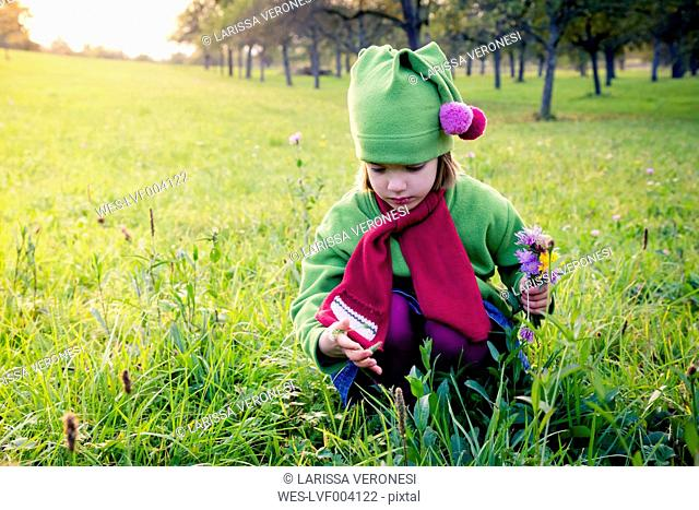 Germany, Baden-Wuerttemberg, little girl with picked flowers crouching on a meadow