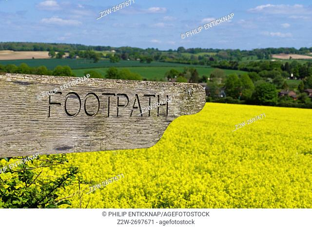 Footpath Sign over field of yellow rapeseed to countryside near Ropley, Hampshire, England