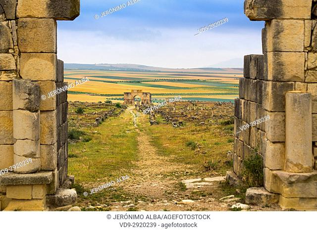 UNESCO World Heritage Site. Archeological site roman ruins of Volubilis. Morocco, Maghreb North Africa