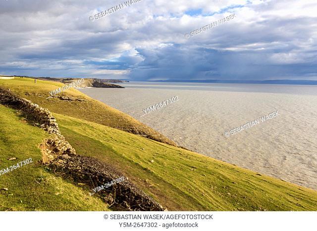 Cliffs on the Glamorgan Heritage Coast, Southerndown, Vale of Glamorgan, Wales, United Kingdom, Europe