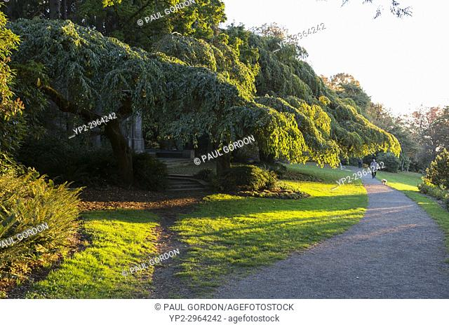Seattle, Washington: Footpath along Volunteer Park Reservoir at sunset