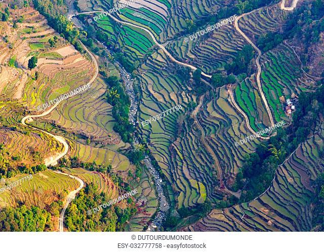 Aerial view of paddy fields near Pokhara, Nepal