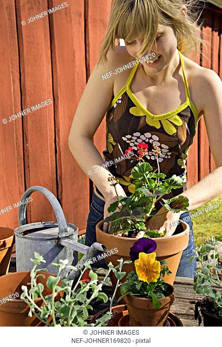 Young woman planting flowers in pots