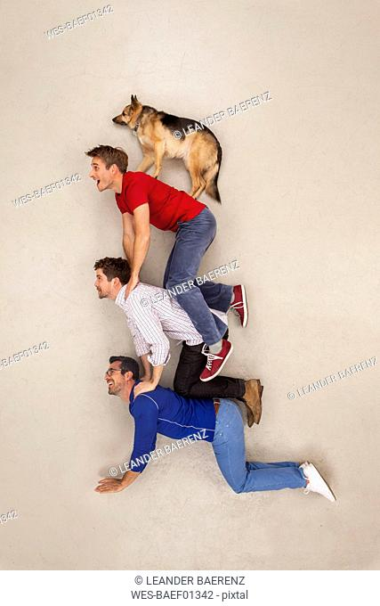 Three friends balancing a dog on top of them