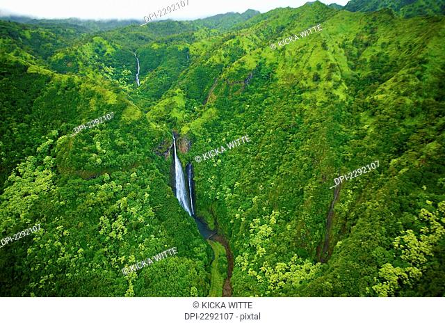 A Stream Flowing Through The Mountains Covered With Lush Green Trees;Hawaii United States Of America