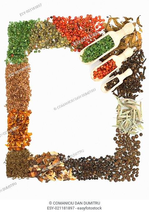 colorful spices frame