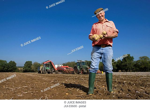 Portrait of smiling farmer holding potatoes in sunny, rural field with tractors in background