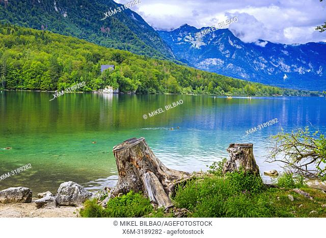 Lake Bohinj. Bohinj. Triglav National Park. Upper Carniola region. Slovenia, Europe