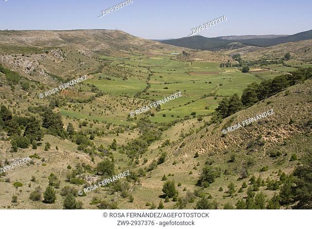 Rural landscape and valley with a flat bottom, typical feature of a karst area, Alto Tajo Natural Park, Guadalajara, Castilla La Mancha, Castile, Spain