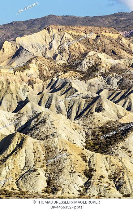 Bare ridges of eroded sandstone, badlands of Tabernas Desert, Almeria province, Andalusia, Spain