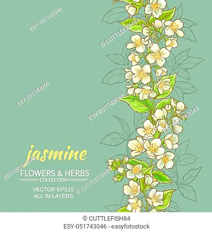 jasmine flowers vector pattern on color background