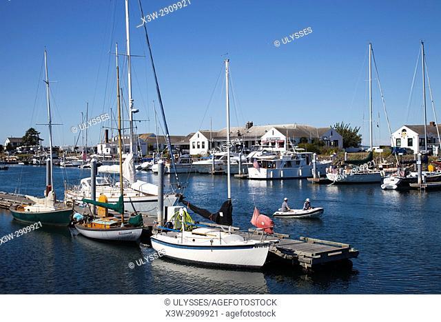 Point Hudson Marina, Port Townsend, State of Washington, USA, America