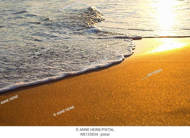 close-up of gentle wave rolling onto sandy golden sunset beach