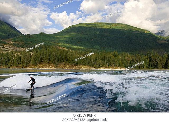 A surfer rides the waves at Skookumchuck Provincial park, near Egmont, Sunshine coast, Vancouver coast and mountain range, British Columbia, Canada