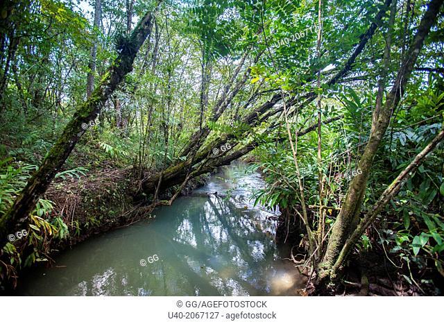 Guatemala, Alta Verapaz, San Juan Chamelco, river