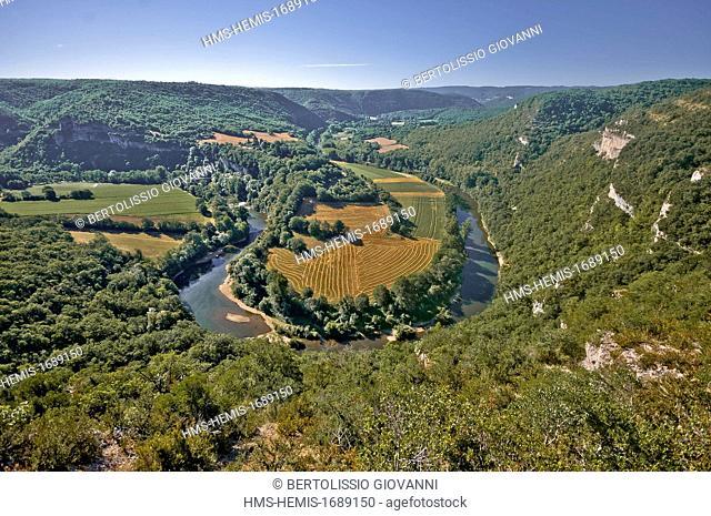 France, Tarn et Garonne, Aveyron gorges near Saint Antonin Noble Val, meander Bush