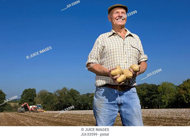 Smiling farmer holding potatoes in sunny, rural field with tractors in background