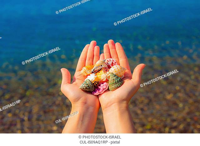 Close up of young womans hands holding seashells, Eilat, Israel