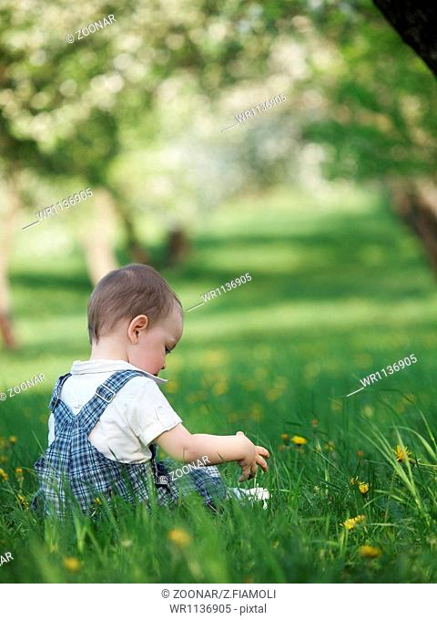 Outdoor baby in the spring