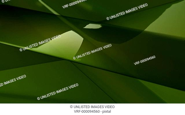 backgrounds, animated, HD, high definition