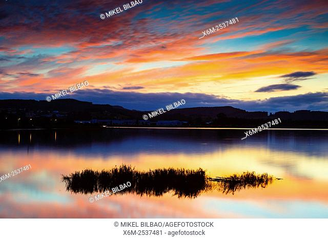 Salt marsh at sunset. Colindres, Marismas de Santoña, Victoria y Joyel Natural Park. Cantabria, Spain, Europe