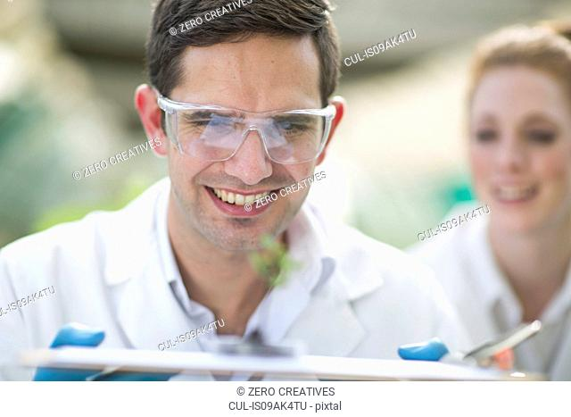 Male and female scientists looking at plant sample