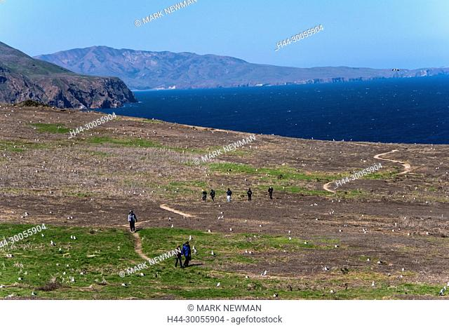 channel islands NP, California