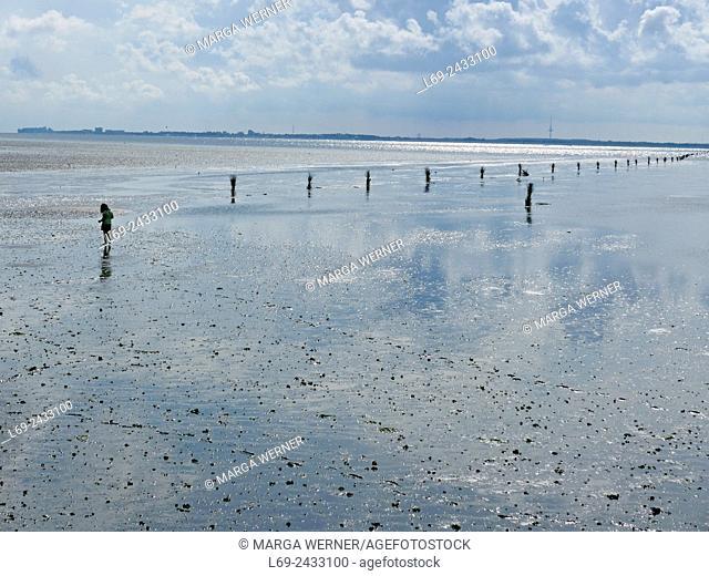 Island Neuwerk, Elbe estuary, North Sea, Hamburg, Germany
