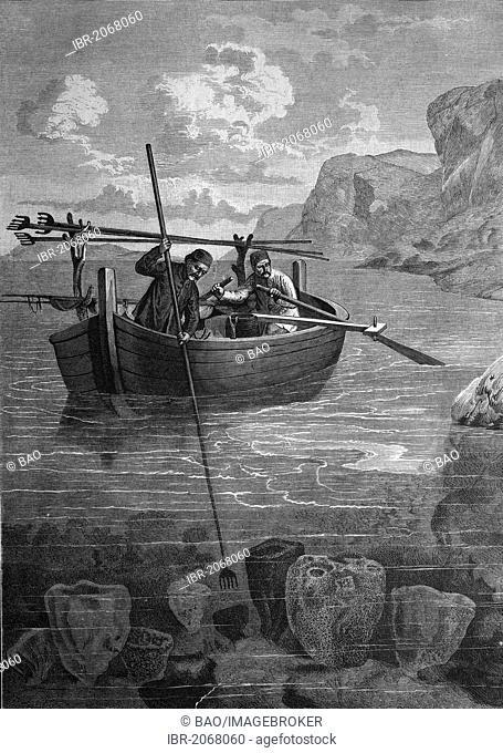 Historical engraving, sponge fishing in Dalmatia, 1888