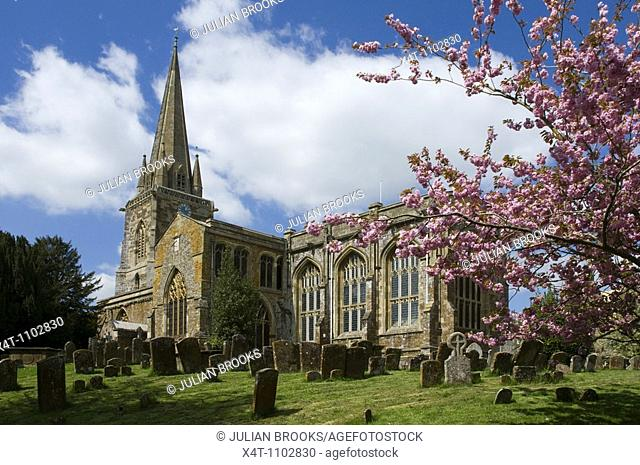 The church at West Adderbury in the Cotswolds, Oxfordshire, UK with cherry blossom