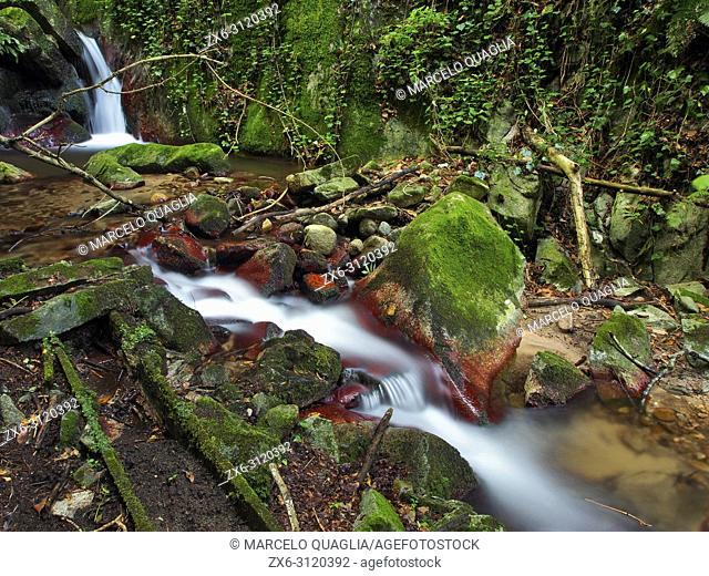 Riera de les Truites stream, Arbucies village countryside. Montseny Natural Park. Barcelona province, Catalonia, Spain