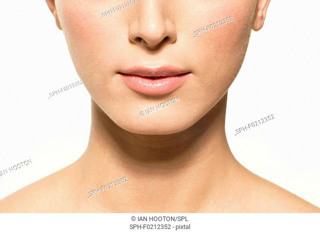 Woman's lower face